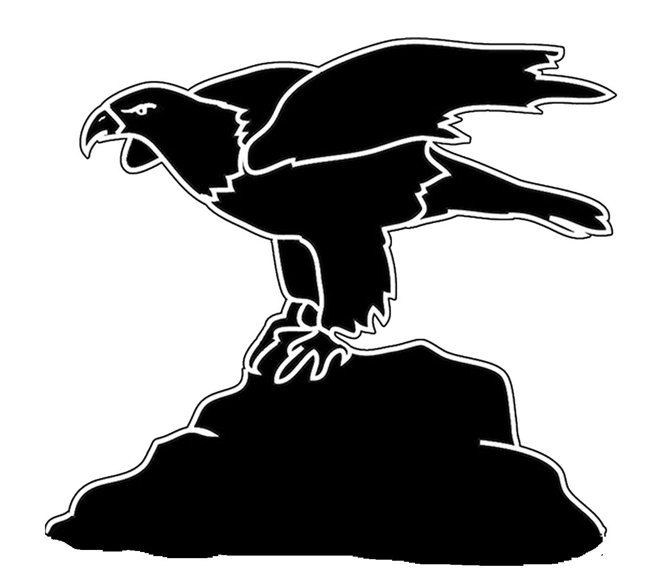 bird silhouette eagle on cliff