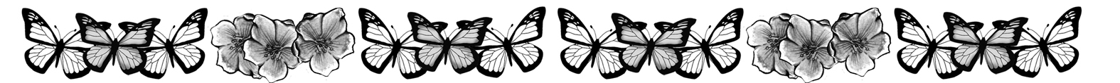 black and white butterfly and flower border