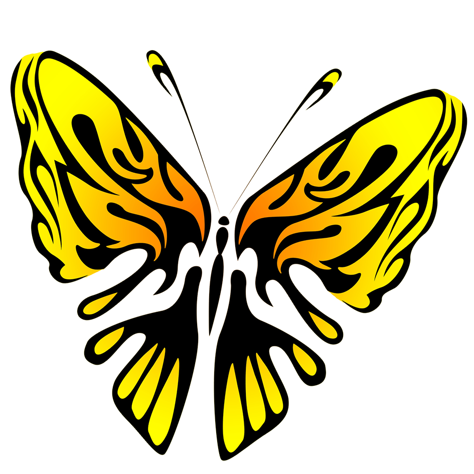 black and yellow butterfly image PNG