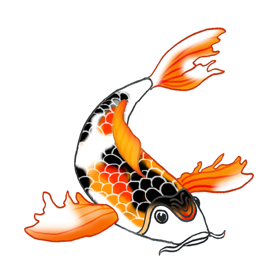 black orange koi fish