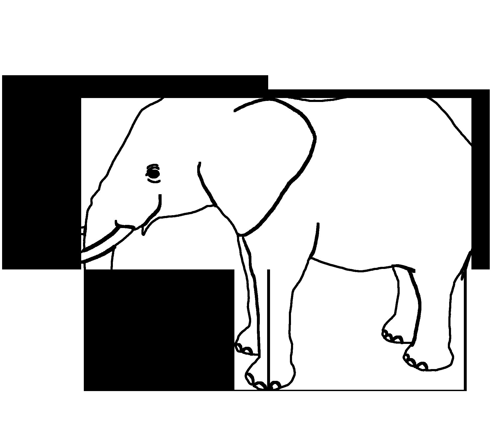 black outline of elephant silhouette
