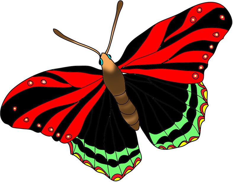 black-red-butterfly-image