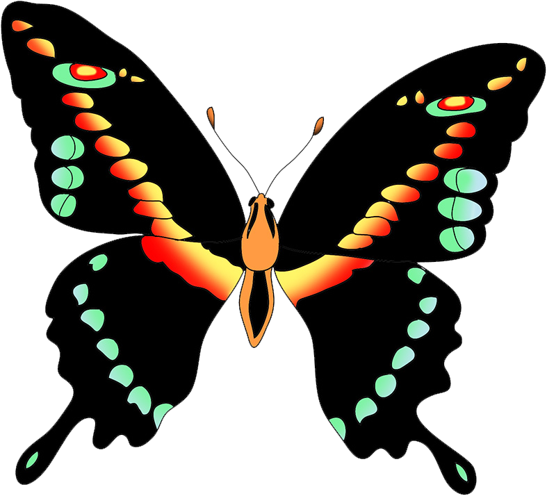 black swallow tail butterfly clipart