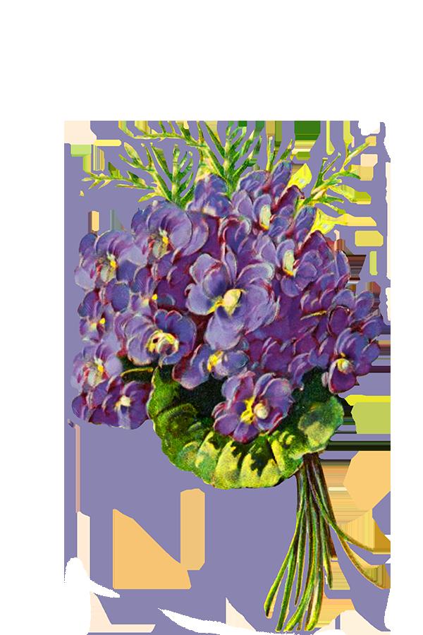 blue floral clipart