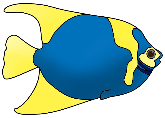 blue yellow fish