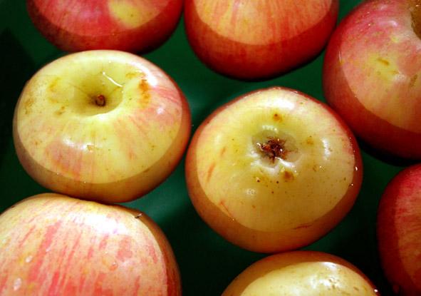 bobbing apples at Halloween