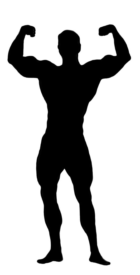 bodybuilder male clipart