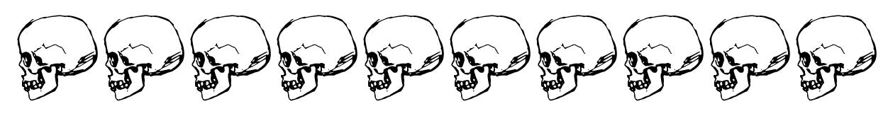 border with skull profiles