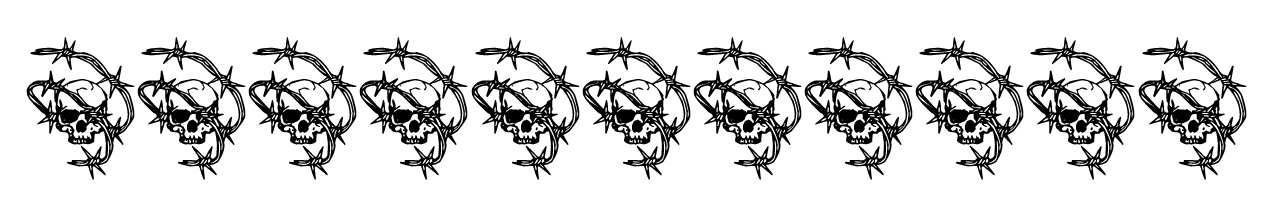 border skulls and barbed wire