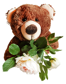 brown Teddy bear with rose