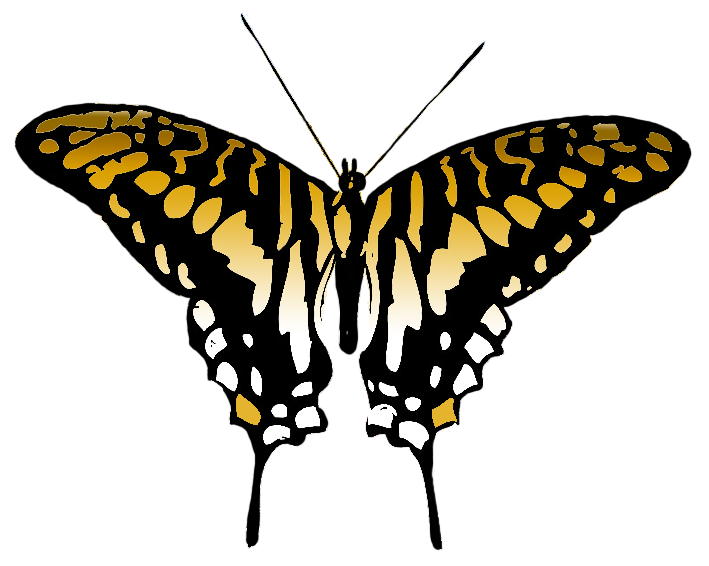 butterfly clipart brown colored wings