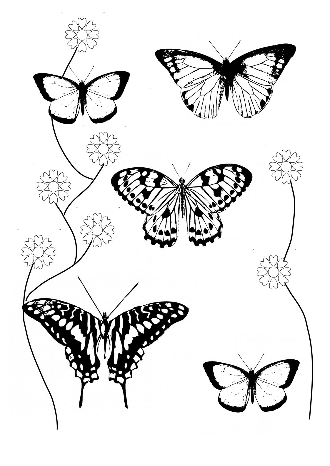 600 Coloring Pages With A Butterfly , Free HD Download