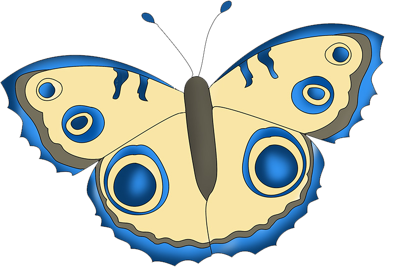 blue and beige butterfly drawing