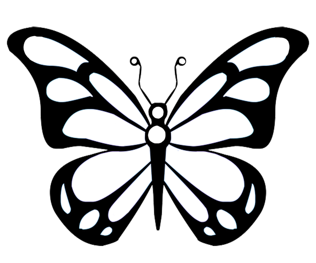 butterfly wings with pattern for coloring
