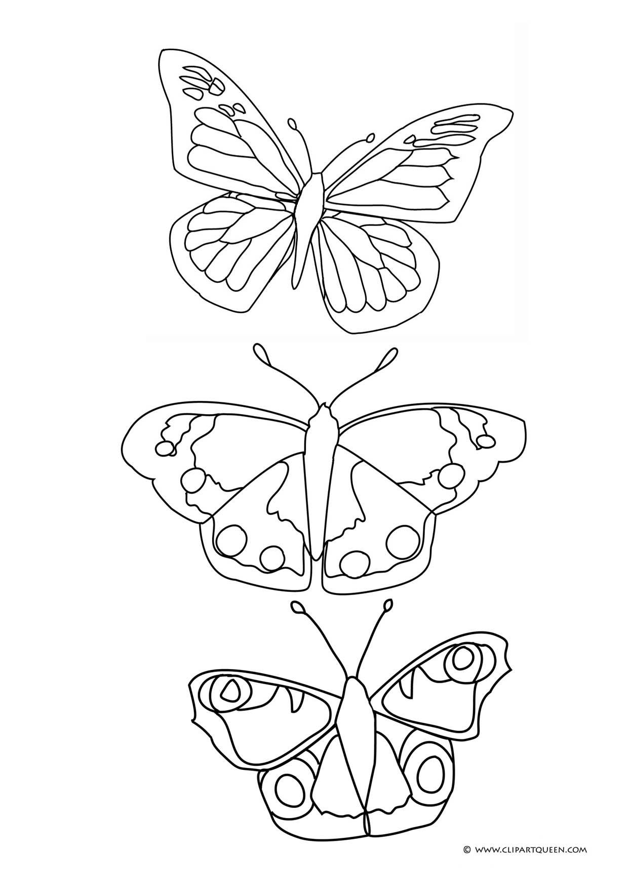 butterfly drawings to color