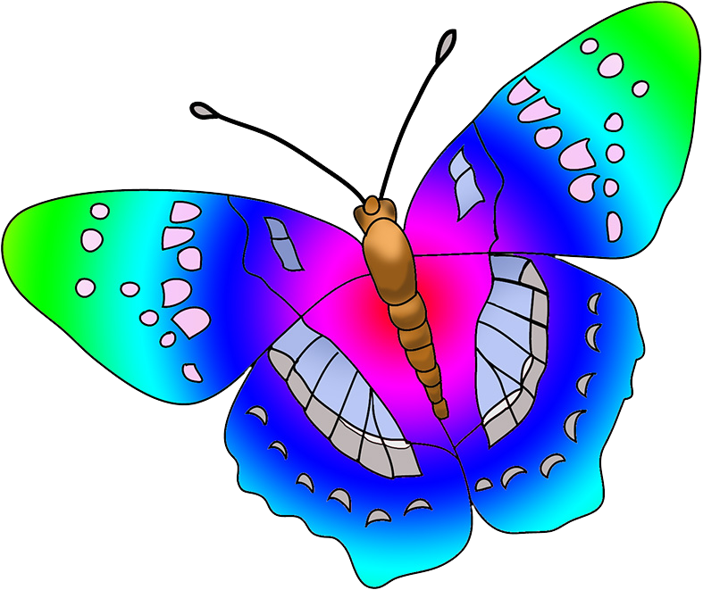 butterfly multicolored clipart
