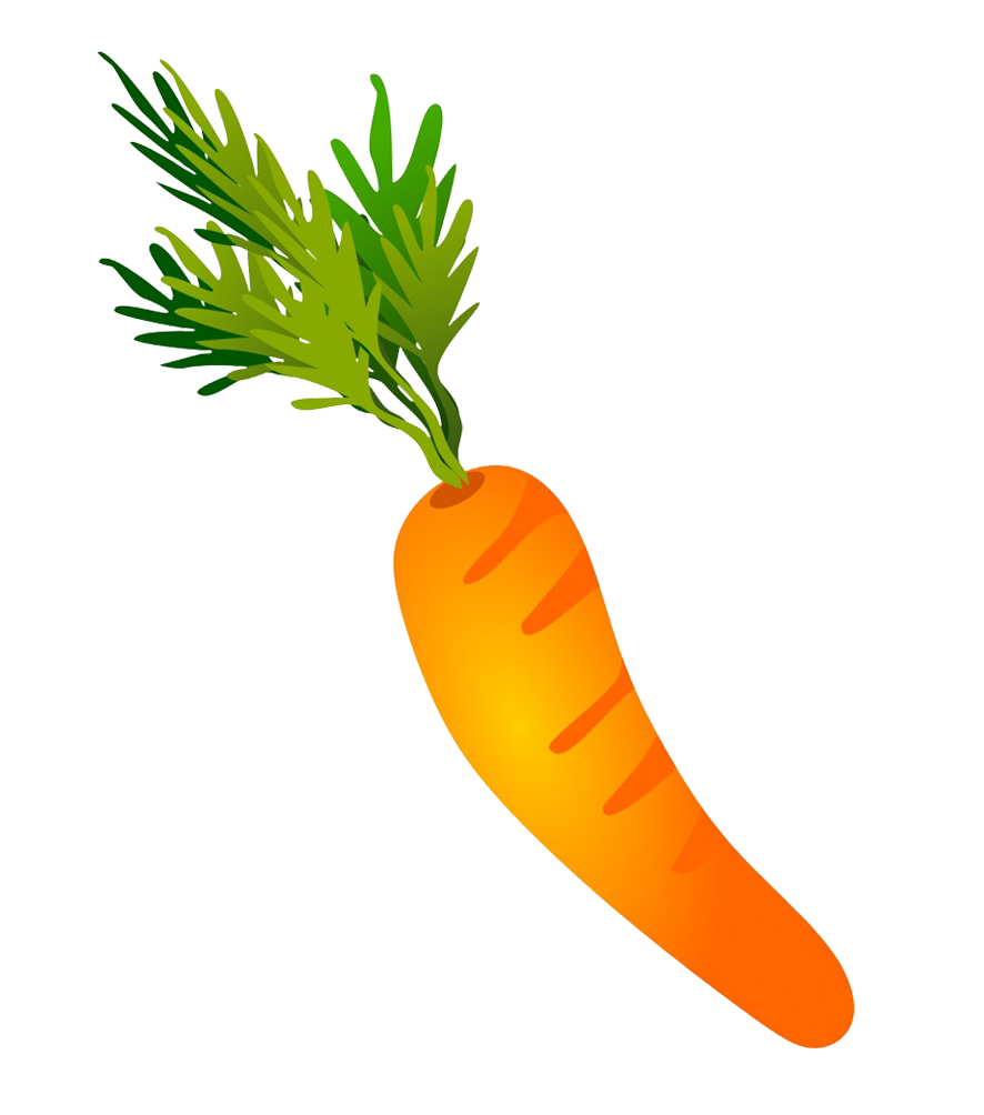 carrot drawing