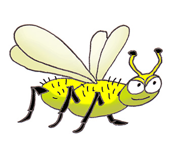 cartoon drawing of flying insect
