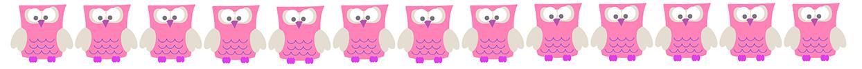 pink owl border