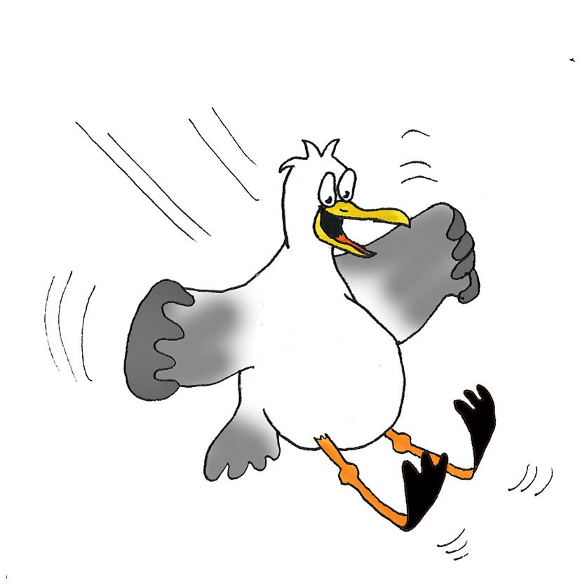cartoon seagull landing