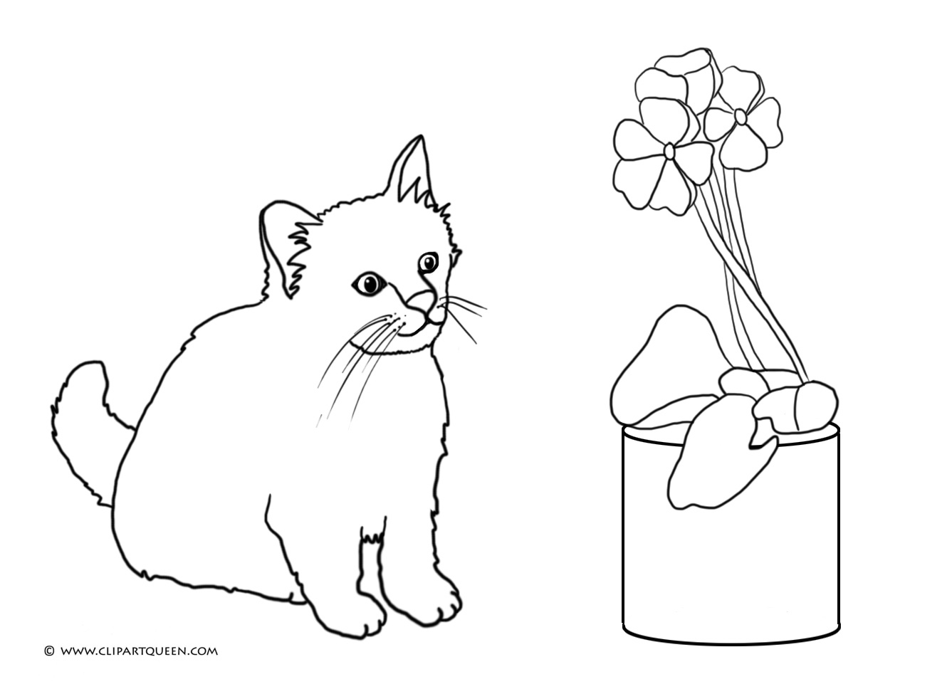 cat looking at flower