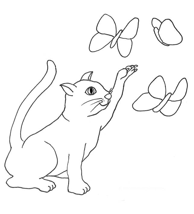 cat catching butterflies sketch