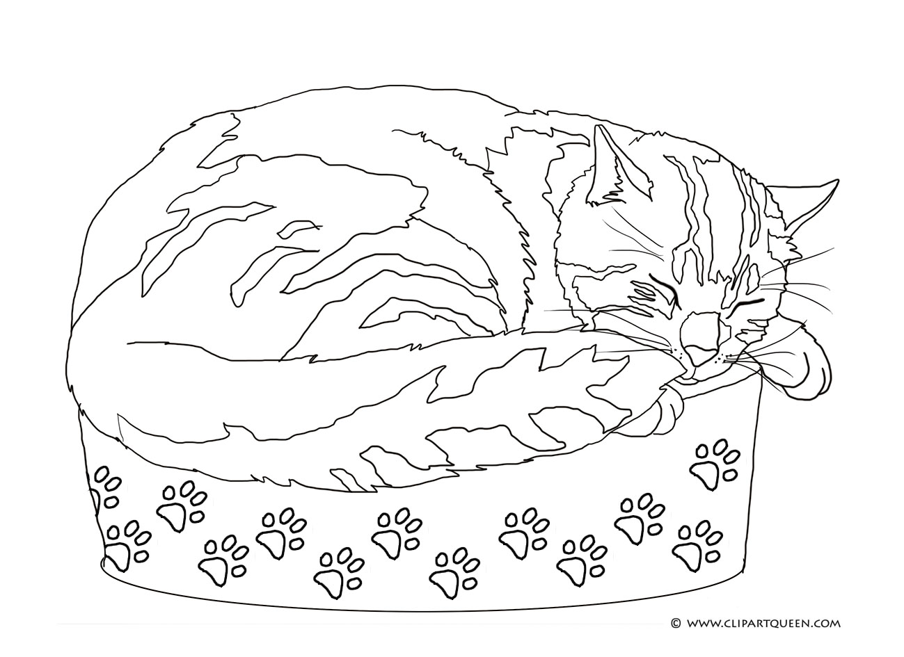 coloring page with sleeping cat