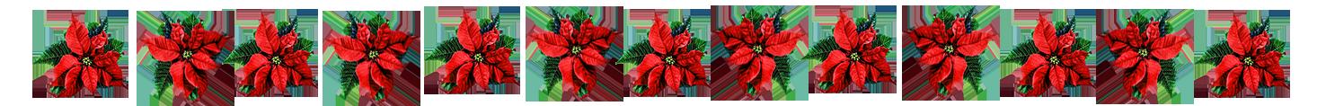 Chrismas flower border clip art