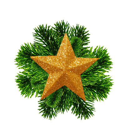 Christmas star and spruce