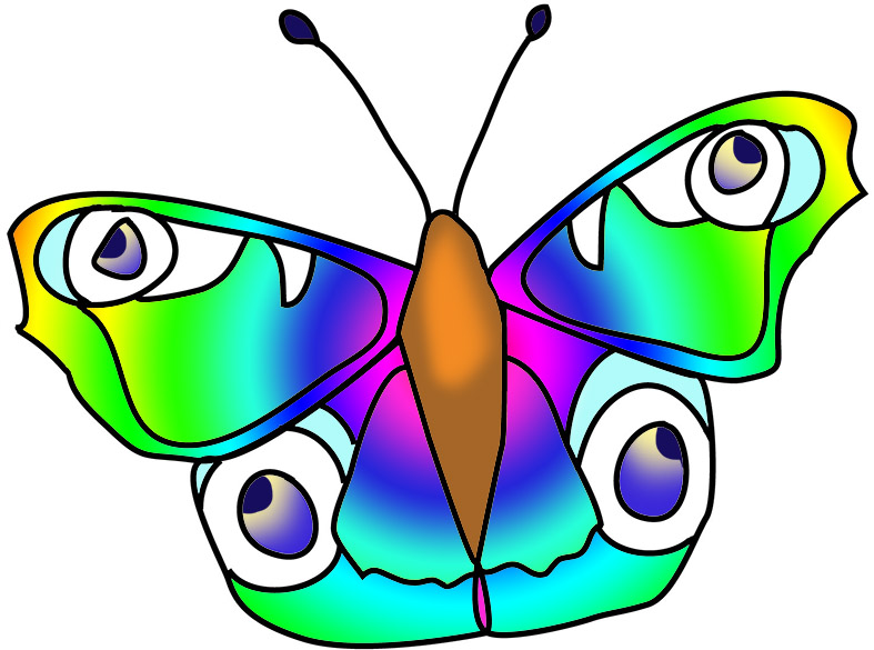 Green blue colorful butterfly image