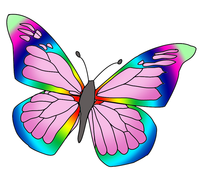 rainbow colored butterfly image