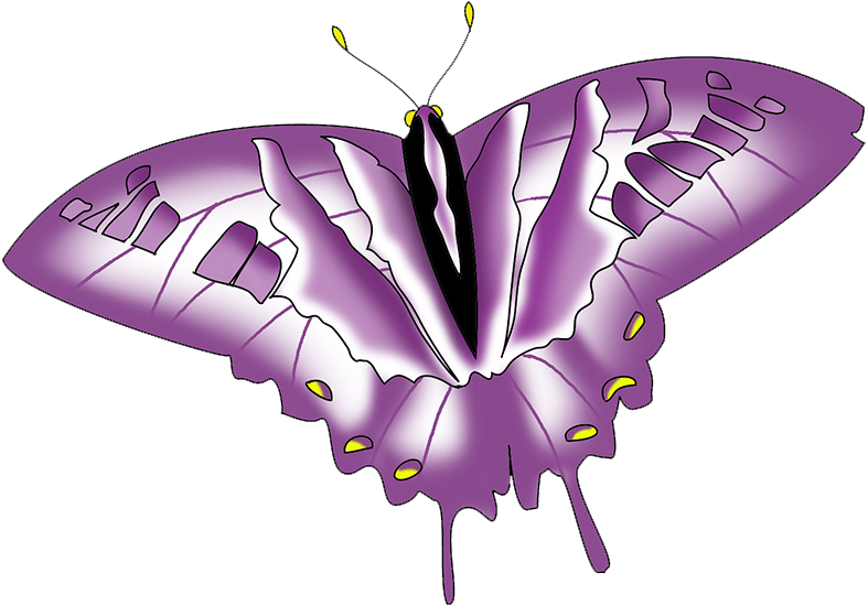 colorful purple swallowtail clipart