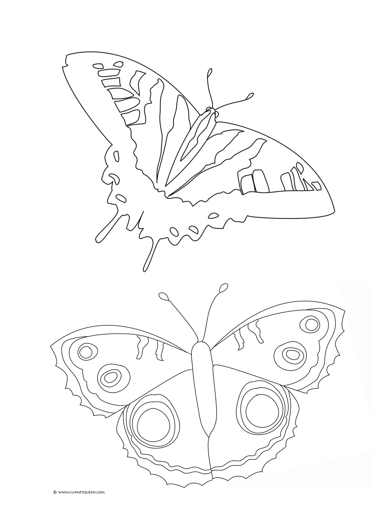 coloring page with butterflies butterfly drawings to color - Butterfly Color Sheet