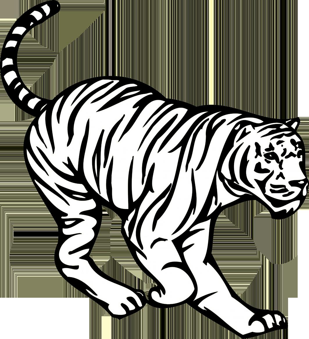crouching tiger image