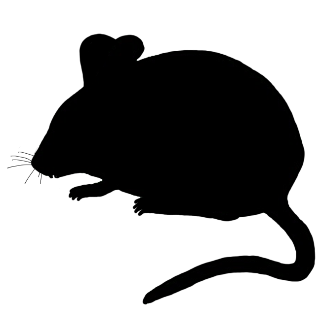 cute mouse silhouette