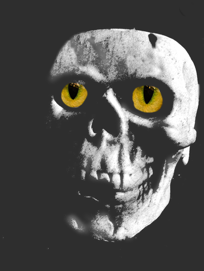 dark skull with yellow eyes