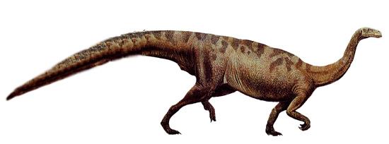 plateosaurus clip art