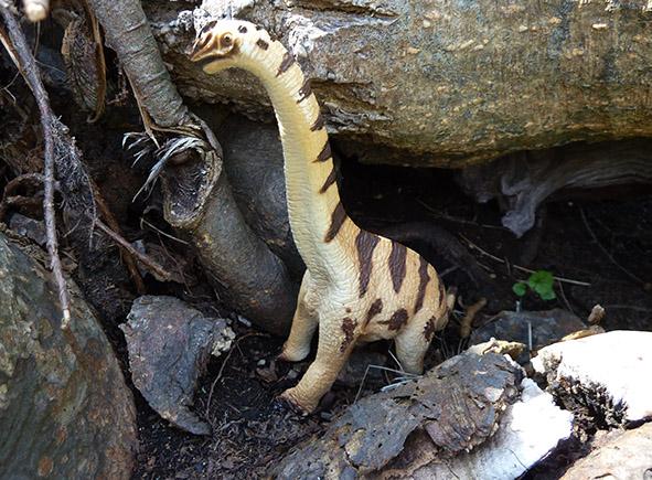 Apatosaurus dino