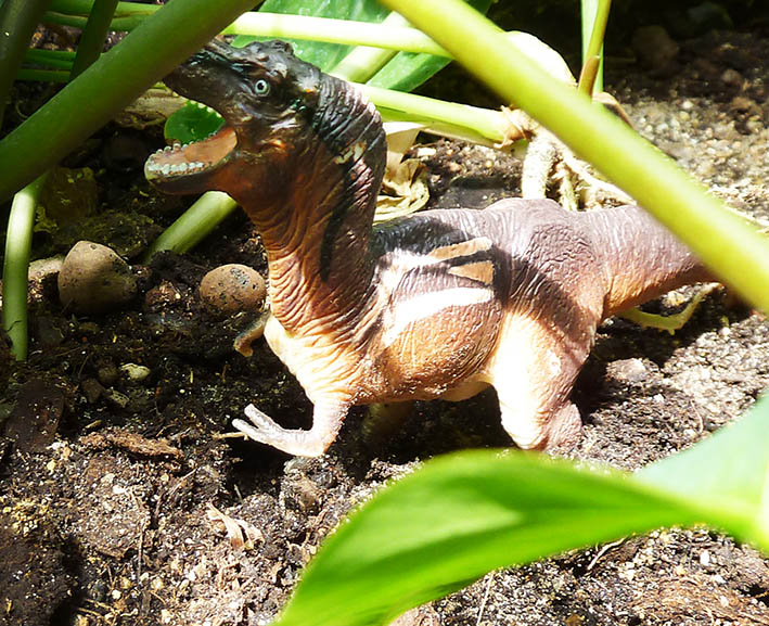 Rain-forest-dinosaur