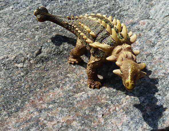 kind of Anchylosaurus