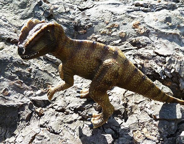 Small t-rex