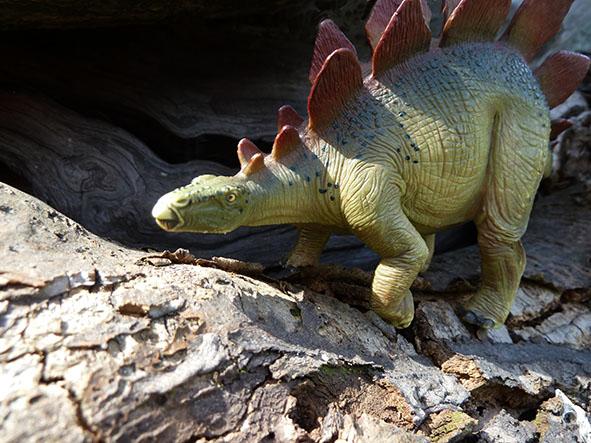 Stegosaurus under attack