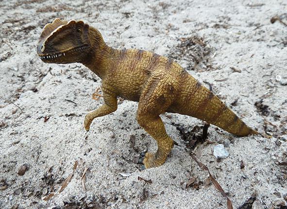 T. Rex on sand