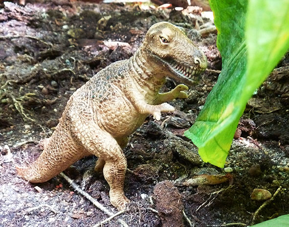 T-rex-in-rain-forest