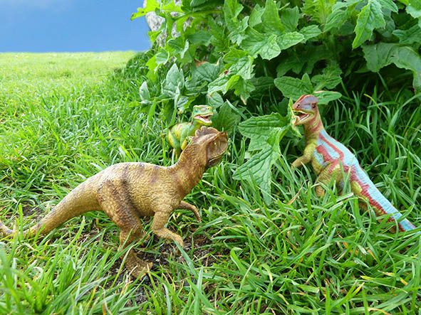 Three dinosaurs meeting