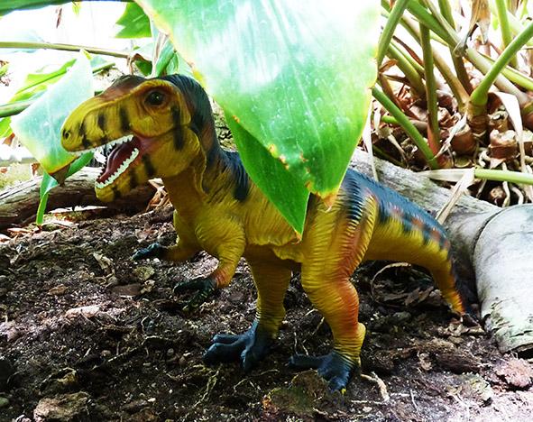 Tyrannosaurus in rain forest