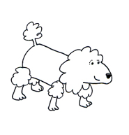 Dog clip art poodle sketch