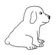 dog sketches puppy