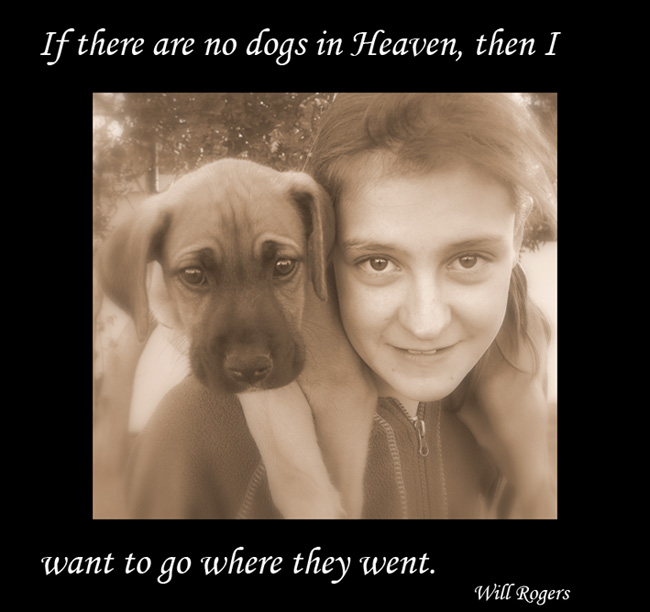 Dog Quotes With Girl And Dog Old Picture ...