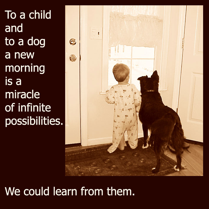 dog quote about a child and dog and new day
